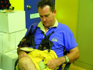 Discovery Centre staff form part of Wildlife Rescue in the Daintree region