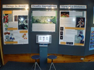 Learn about the dangers of the Daintree Rainforest